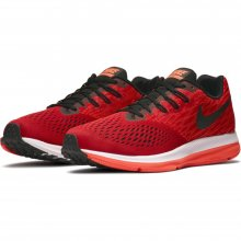 Nike Men's Nike Air Zoom Winflo 4 Running Shoe