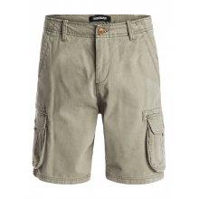 Quiksilver Quiksilver Deluxe Shorts