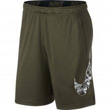 Nike Nike Dry Shorts
