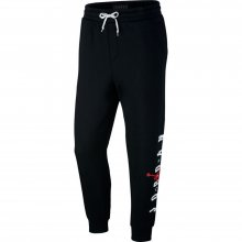 Jordan Jordan Sportswear Jumpman Air Graphic Fleece Men's Pants