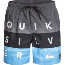 Quiksilver Quiksilver Word Block Volley 17