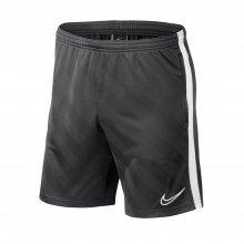 Nike Nike M Nk Brt Acdmy19 Short Jaq Kp